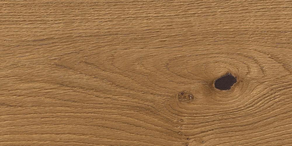 Oak Universal PLAZA